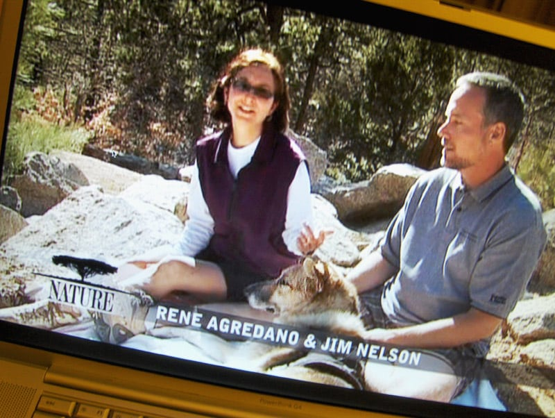 Jim, Rene and Jerry in Why We Love Cats and Dogs on Nature