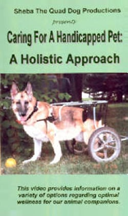 Holistic Caring For Handicapped Pets Video