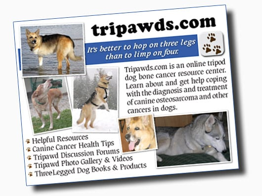Announcing the Tripawds Downloads blog to compile links to helpful online resources and downloadable e-books. Read reviews and spread canine cancer dog leg amputation awareness.